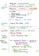Notizen Paläographie & Schriftkunde 2015-05-28 Blatt 01